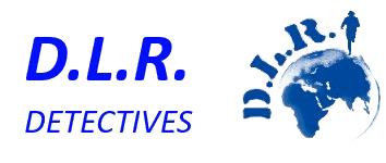 DLR Detectives